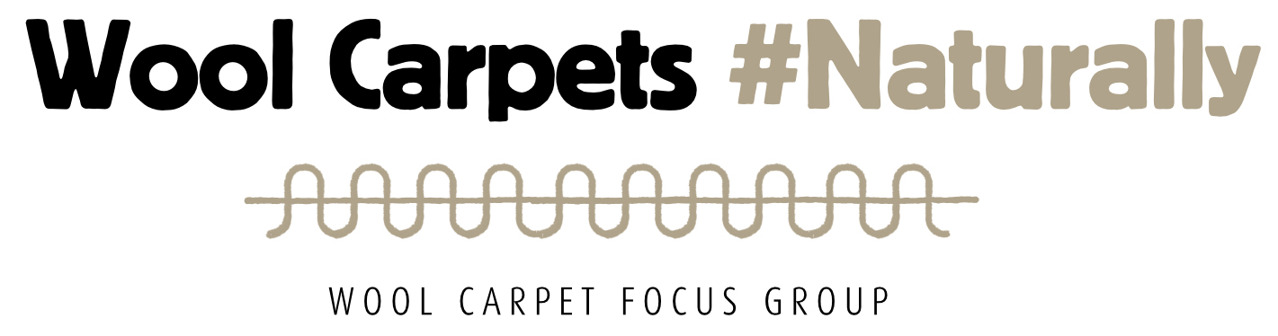 Wool Carpet Focus Group