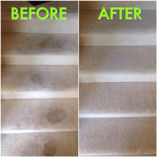 Cleaning by Rug Worx + Carpet Tech Services
